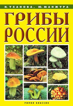 Манжура Ю., Уханова И. Грибы России