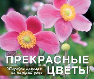 Фомина Ю. Прекрасные цветы. Шедевры природы на каждый день