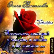 Васильева О. АУДИОКНИГА MP3. Несколько историй о жизни, о любви – и не только