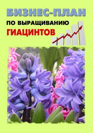 БРУЙЛО А., ШЕШКО П. Бизнес-план по выращиванию гиацинтов
