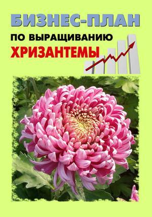 БРУЙЛО А., ШЕШКО П. Бизнес-план по выращиванию хризантемы