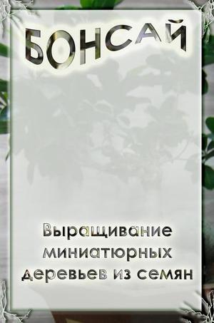 Мельников И. Выращивание миниатюрных деревьев из семян