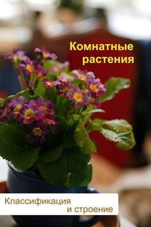Мельников И. Комнатные растения. Классификация и строение