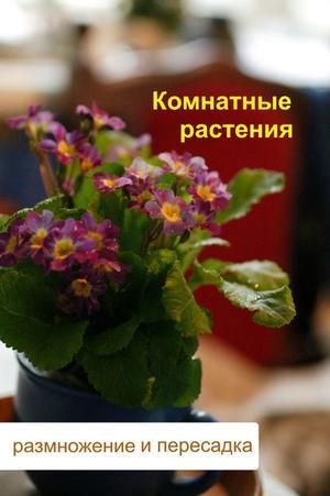 Мельников И. Комнатные растения. Размножение и пересадка