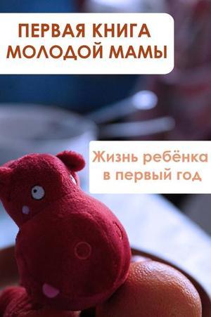 Мельников И. Жизнь ребёнка в первый год