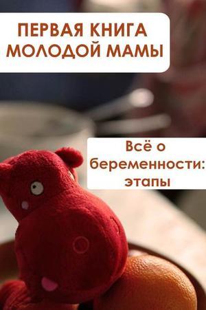 Мельников И. Всё о беременности: этапы