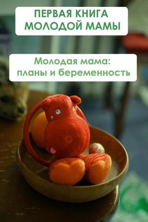 Мельников И. Молодая мама: планы и беременность