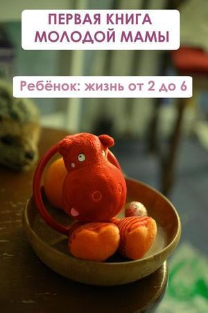 Мельников И. Ребёнок: жизнь от двух до 6