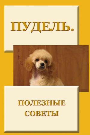 Мельников И. Пудель. Полезные советы