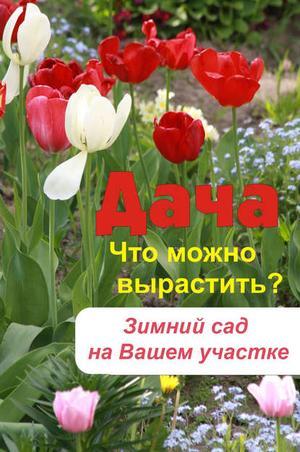 Мельников И. Что можно вырастить? Зимний сад на вашем участке
