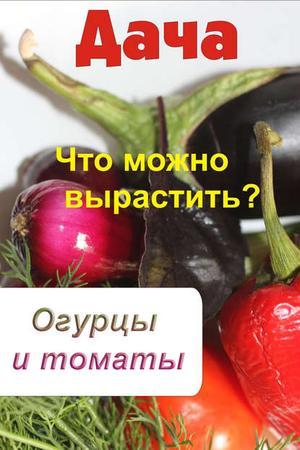 Мельников И. Что можно вырастить? Огурцы и томаты