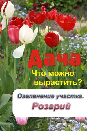 Мельников И. Что можно вырастить? Озеленение участка. Розарий