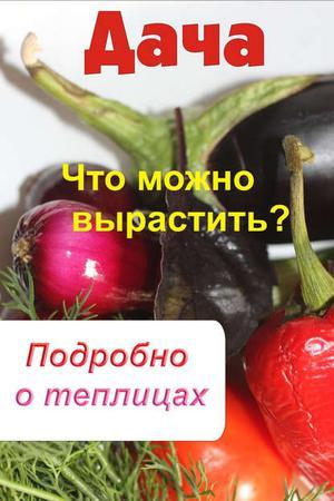 Мельников И. Что можно вырастить? Подробно о теплицах