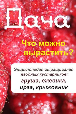 Мельников И. Что можно вырастить? Энциклопедия выращивания ягодных кустарников: груша, ежевика, ирга, крыжовник